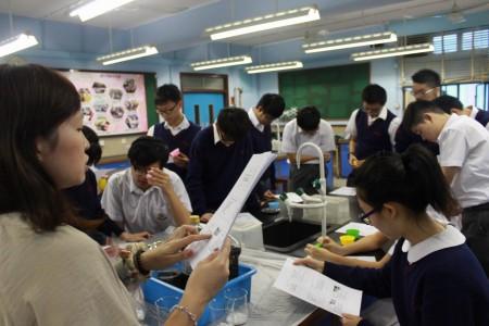 肥皂工作坊 Soap Making Workshop